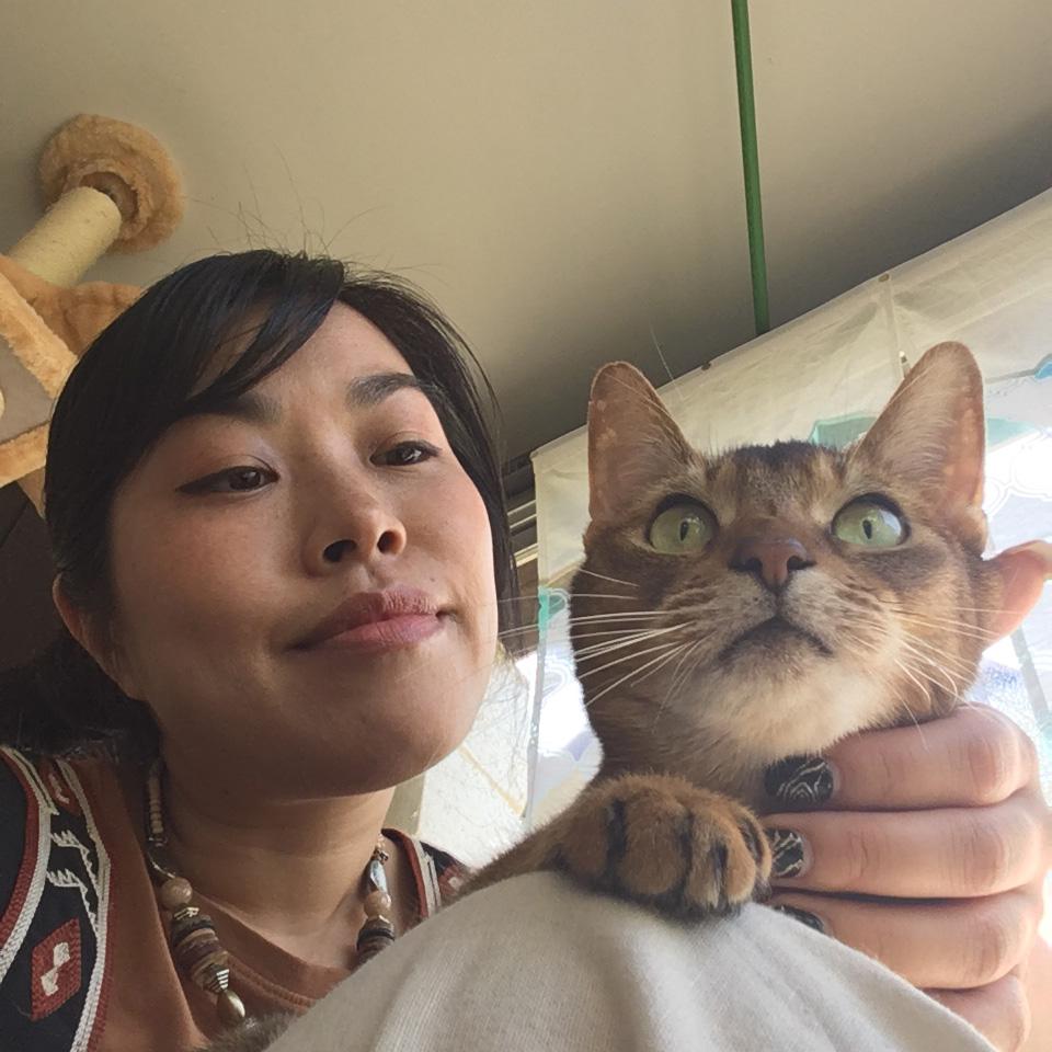 アサガミ キクコのプロフィール画像